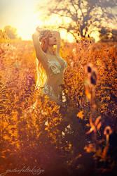 Summer Sunset Fairy by gestiefeltekatze