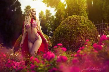 Enchanted Roses by gestiefeltekatze