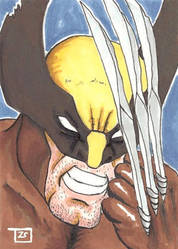 X-men Wolverine Sketch card by TolZsolt
