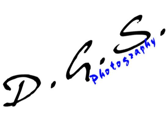 DGSphoto's Profile Picture