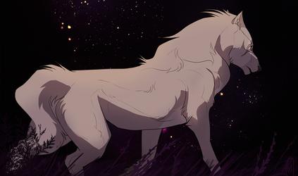 Wander by impalae