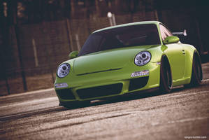 Porsche GT3 Lime Color by sergoc58