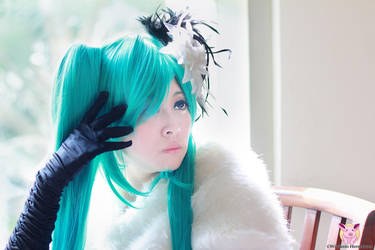 Yola, Vocaloid White Camellia by Zansara