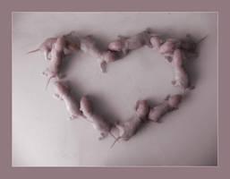 Baby love by Nippalony