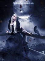 NightFall by Saphica8
