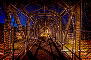 Caged In by DARRYL-SMITH