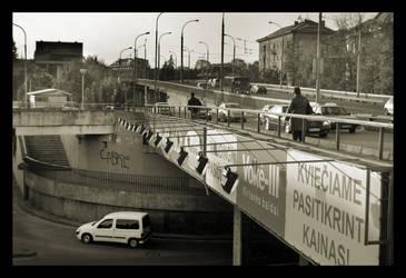 Liubarto bridge: down and up by citrina