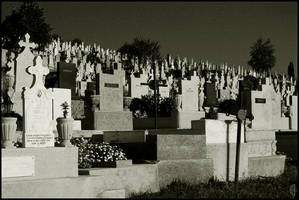 Transylvanian graveyard, 2of4 by citrina
