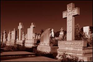 Transylvanian graveyard, 3of4 by citrina