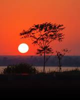 Sunset by citrina