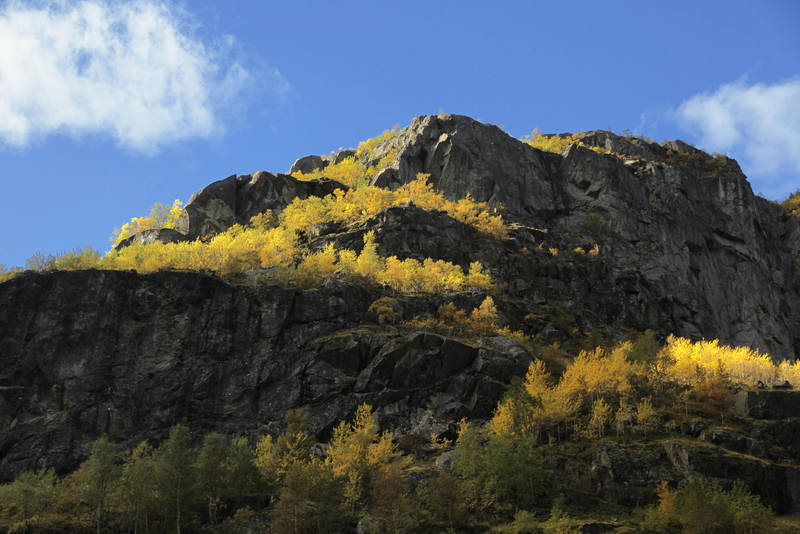 Autumn in the mountains by citrina
