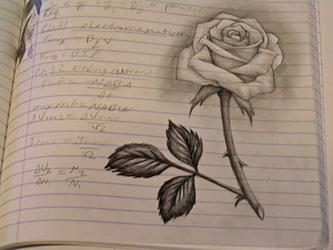 Physics Rose by MissNysha