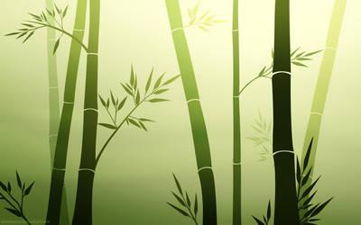 Bamboo Zen by MissNysha