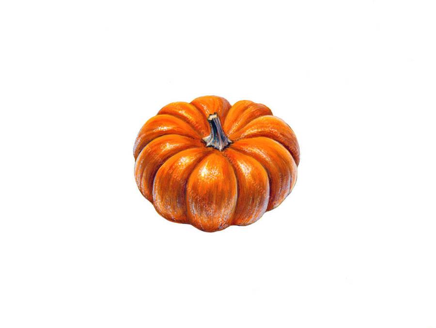 Little pumpkin by MissNysha