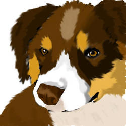 Puppy by Cheshirefreak
