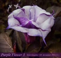 Purple Flower 3 by Sisterslaughter165