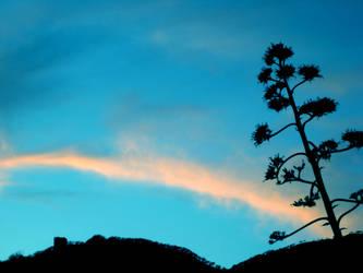 Tree Silhoutte by GryphonMane