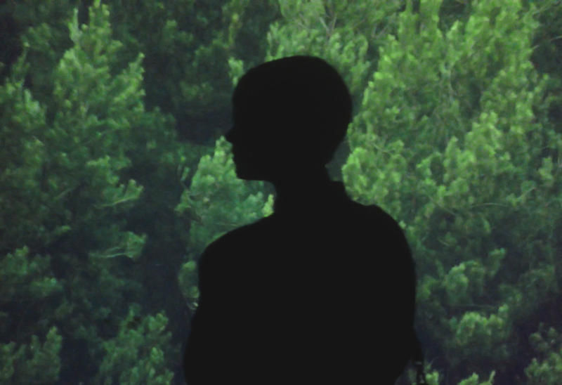 neinoten's Profile Picture