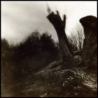 Dreamscape - Watcher by larkie