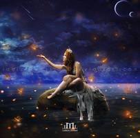 Dragonflies Lighting the Night by LaercioMessias