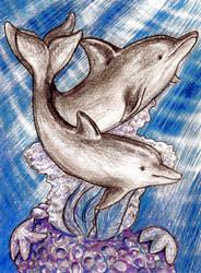 Delfiny by RowanF