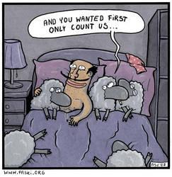 sheeps by TomPastuszka