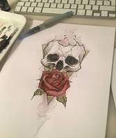 skull rose color by Anny-D