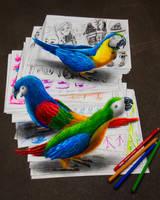 Parrots by RamonBruin
