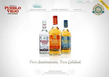 tequila pueblo viejo webdesign by diego64