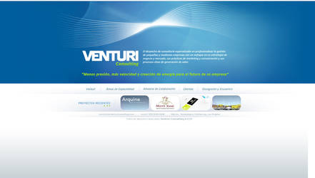 ventury consulting webdesign by diego64