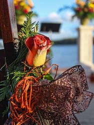 Wedding Flowers by cabridges