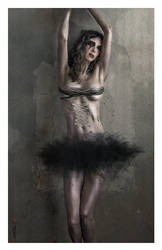 The Black Swan by mirkomkb