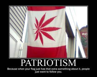 Patriotism by Twiggierjet
