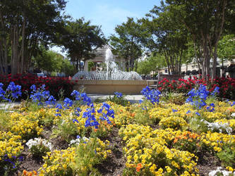 Flowers And Fountain  by baquar