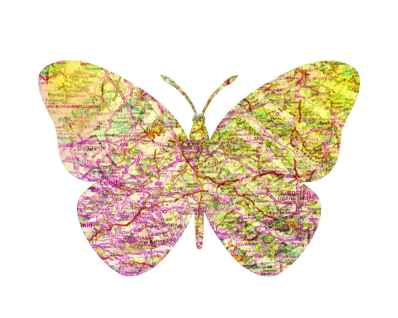 Map Butterfly by kevsterman