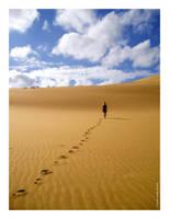 Walk on Wind by mrgulabull