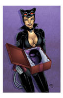 Catwoman commission by seanforney
