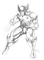 Wolverine by seanforney
