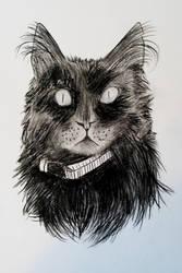 Kitty Cat by purple-kyuuna