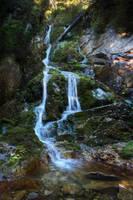 Waterfall in Retezat Mountains by borda