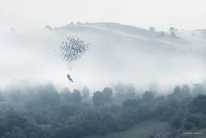 The Seed of Freedom II by borda