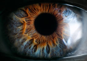 The Portal - a human eye by borda
