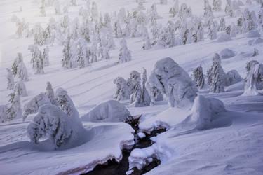 A Frozen Army by borda