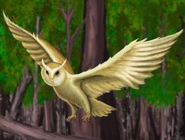 Barn Owl by Vladimir-Olegovych