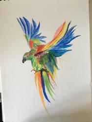 Perroquet aquarelle  by Mavouminibn