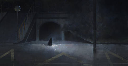 black cat by JoshuaNel