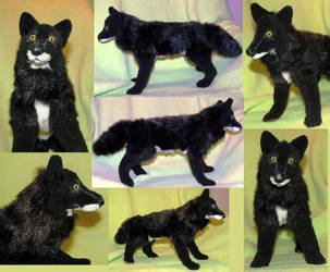 Realistic Dark Wolf plush toy by Jarahamee