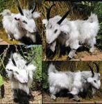 Icelandic Goat 2 by Jarahamee