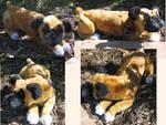 Lancer Boxer Dog Commission by Jarahamee