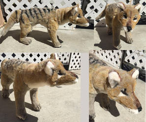Thylacine Plush Toy by Jarahamee